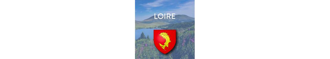 Autocollants pour plaques auto du département de la Loire (42)