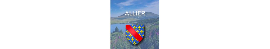 Autocollants pour plaques du département de l'Allier (03)
