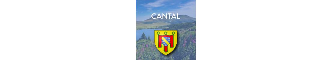 Autocollants pour plaques d'immatriculation - Cantal (15)