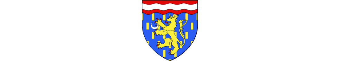 Autocollants pour plaques d'immatriculation - Haute-Saône (70)